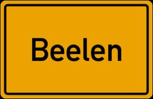Beelen-Glasreinigung