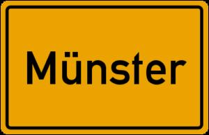 Münster-Glasreinigung